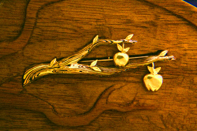 Mokume Apple Bough Pin, detail